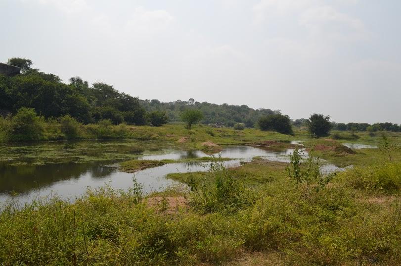 narsapur (6)